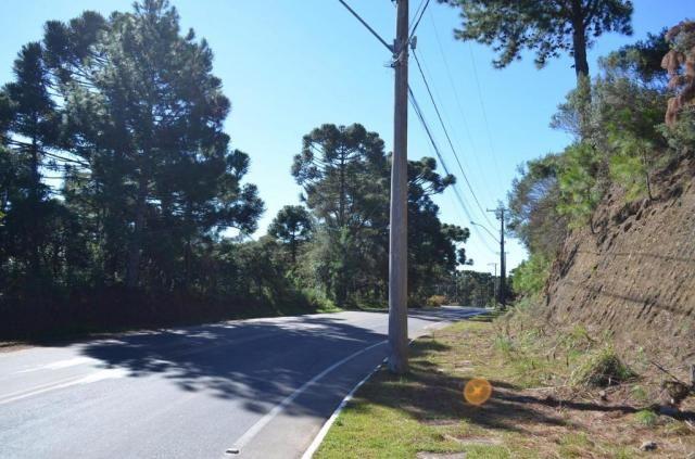 Terreno à venda, 831 m² por r$ 290.000,00 - mato queimado - gramado/rs - Foto 6