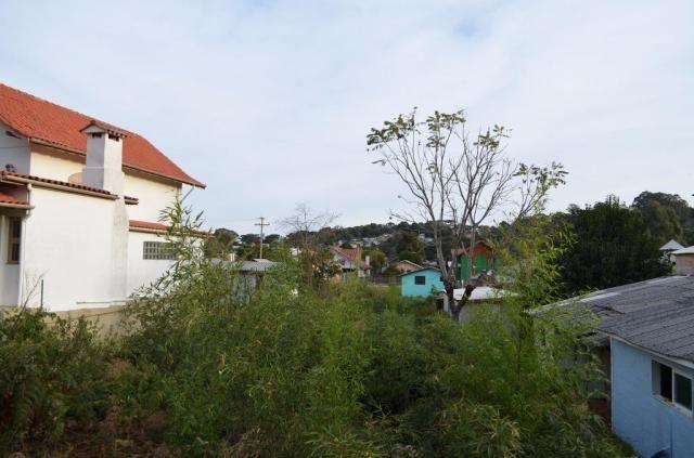 Terreno residencial à venda, são josé, canela. - Foto 7