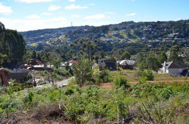 Terreno residencial à venda, vale das colinas, gramado. - Foto 4