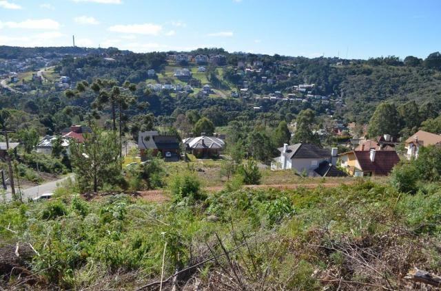 Terreno residencial à venda, vale das colinas, gramado. - Foto 6