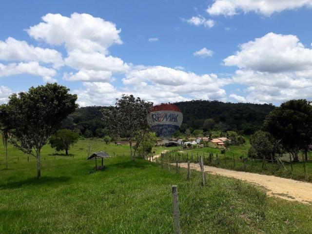 Fazenda à venda em Porto Seguro (Vera Cruz), Bahia