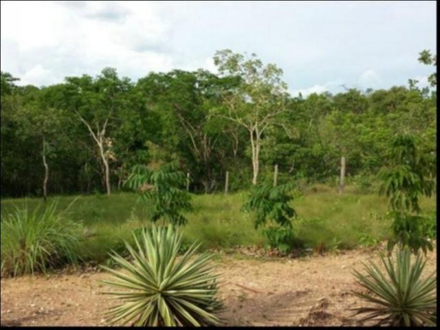 Chácara Coxipó do ouro á venda 27 hectares - Foto 6