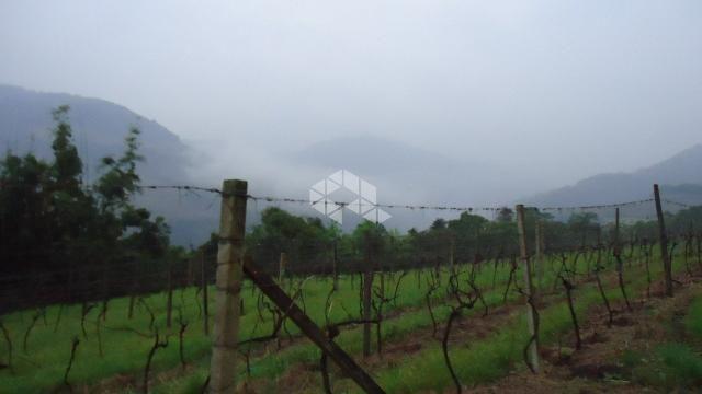 Chácara à venda em Faria lemos, Bento gonçalves cod:9908778 - Foto 13