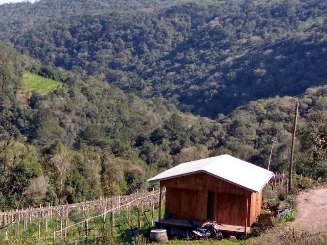 Chácara São Gotardo de Ana Rech 2500m Rio São Marcos 1/4ha - Foto 7