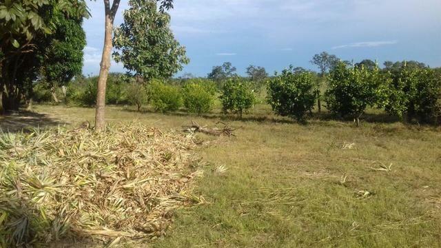 Vendo Sitio / Chácara 72 hectares, Pecuária ou lavoura, Casa, energia, Agua, Nobres - Foto 4