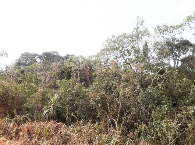 Ref. 2518 Excelente terreno para formar chácara, contendo 46.270,34 m² - Foto 12