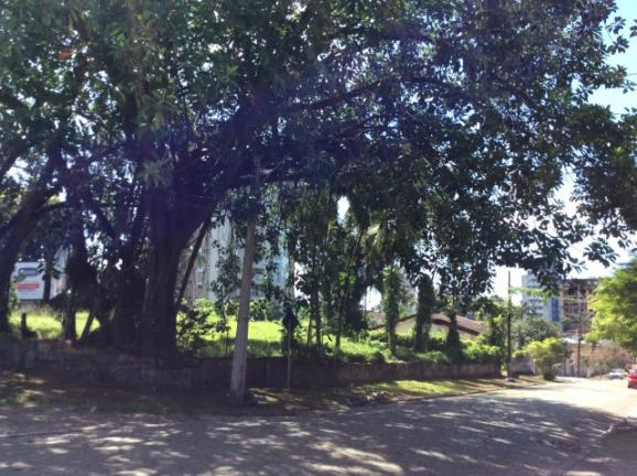 Terreno para alugar em Anita garibaldi, Joinville cod:04301.004