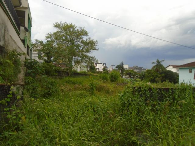 Terreno para alugar em Santo antonio, Joinville cod:07792.003 - Foto 7
