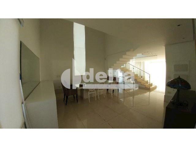 Casa para alugar com 0 dormitórios em Patrimônio, Uberlândia cod:559204 - Foto 17