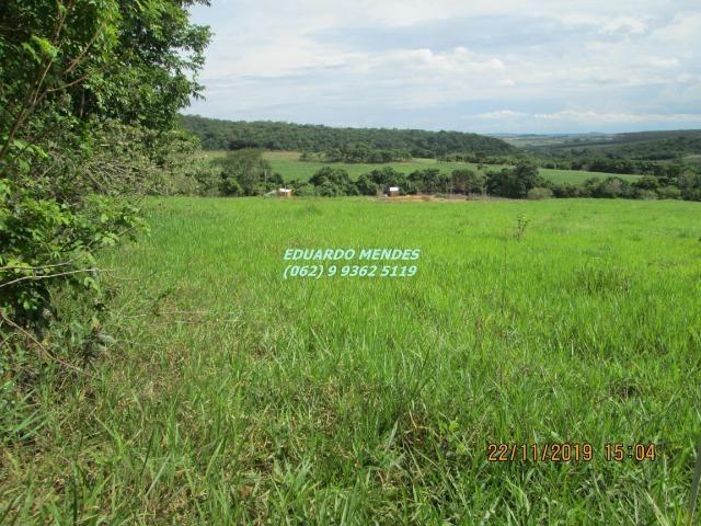 Oportunidade de adquirir sua Chácara de lazer c/ água a 1 km de Gameleira de GO - Foto 4