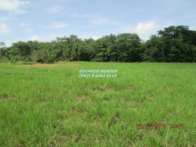 Oportunidade de adquirir sua Chácara de lazer c/ água a 1 km de Gameleira de GO - Foto 12