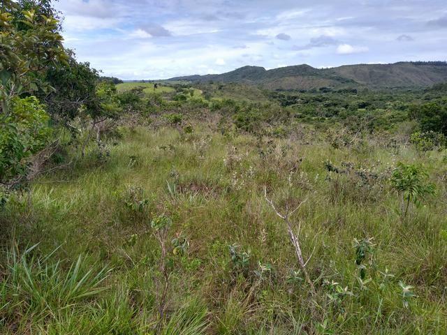 Sítio com 38 hectares as margens do Ribeirao Ze Pedro! - Foto 4