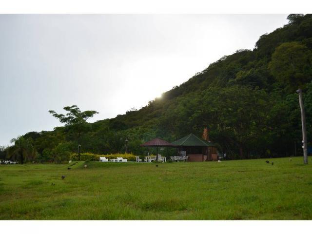Chácara à venda em Zona rural, Barao de melgaco cod:20669 - Foto 13