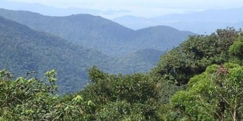 Área à venda, 50000000 m² por R$ 12.500.000,00 - Zona Rural - Pilão Arcado/BA