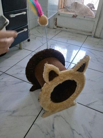 Arranhador tunel de gato - Foto 4