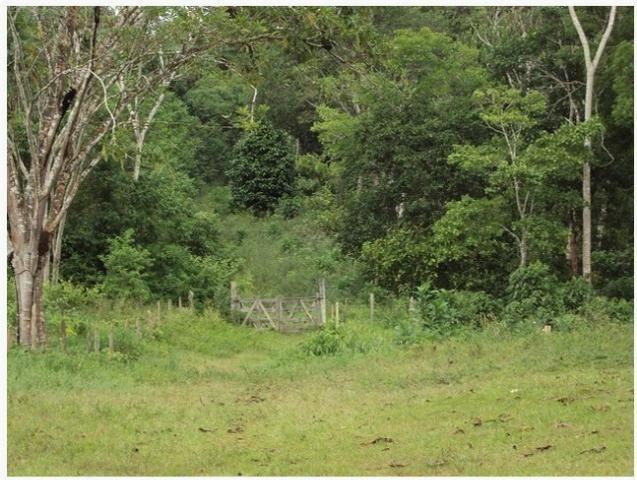 Fazenda, bairro do Japú, em Ilhéus - BA - Foto 2