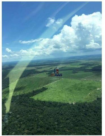 Belíssima fazenda a venda na divisa de Rondônia com o estado de mato grosso - Foto 17