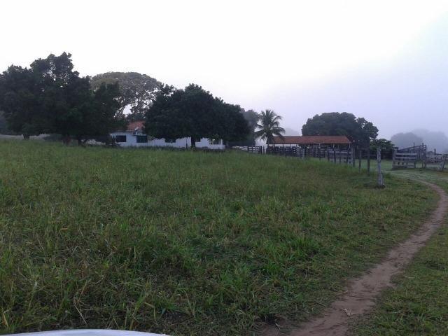 Sitio fazenda,em miranda,m.sul