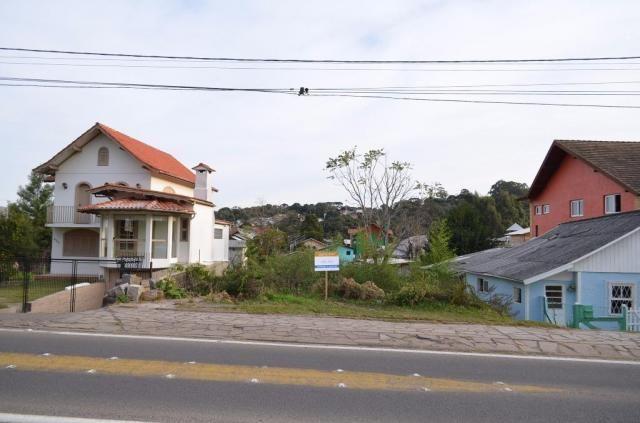 Terreno residencial à venda, são josé, canela. - Foto 2