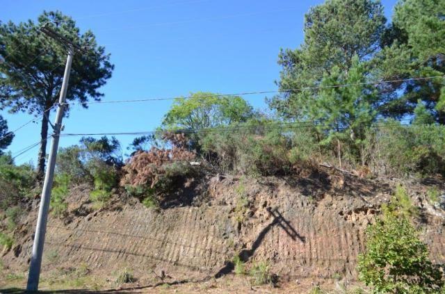 Terreno à venda, 831 m² por r$ 290.000,00 - mato queimado - gramado/rs - Foto 3