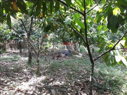 Fazenda à venda em Porto Seguro (Vera Cruz), Bahia - Foto 10