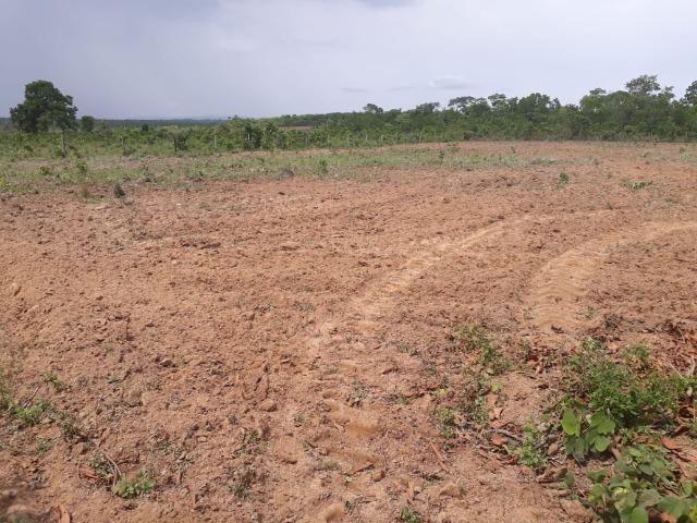 Vendo Sitio / Chácara 72 hectares, Pecuária ou lavoura, Casa, energia, Agua, Nobres - Foto 9