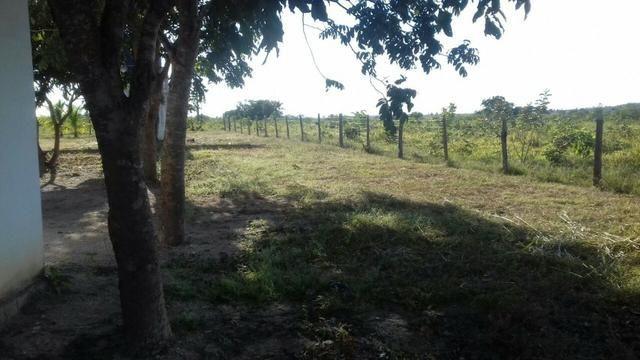 Vendo Sitio / Chácara 72 hectares, Pecuária ou lavoura, Casa, energia, Agua, Nobres - Foto 14