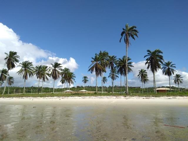 Sua casa de praia em Costa de Itapema - Ótima oportunidade!! - Foto 5