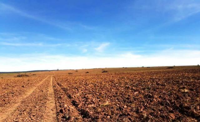 Fazenda 5276 ha N. Brasilandia MT