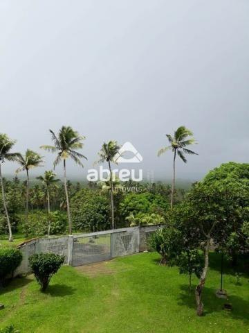 Sítio à venda com 5 dormitórios em Coqueiros, Ceará-mirim cod:767995 - Foto 12