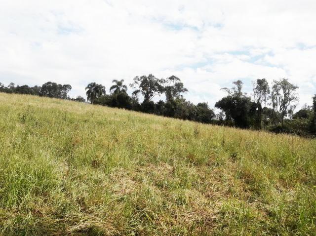 Ref. 2518 Excelente terreno para formar chácara, contendo 46.270,34 m² - Foto 11