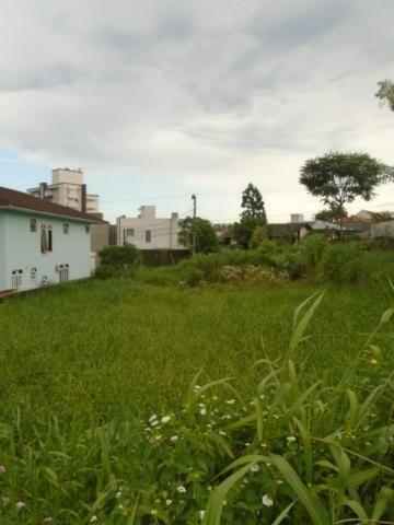 Terreno para alugar em Santo antonio, Joinville cod:07792.003 - Foto 2
