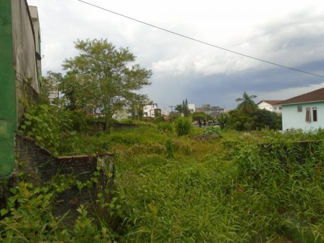 Terreno para alugar em Santo antonio, Joinville cod:07792.001 - Foto 6