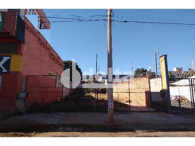 Terreno para alugar com 0 dormitórios em Umuarama, Uberlândia cod:567245 - Foto 5