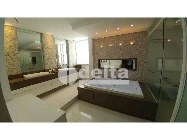 Casa para alugar com 0 dormitórios em Patrimônio, Uberlândia cod:559204 - Foto 18