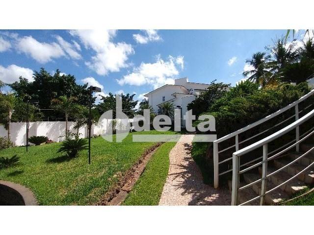 Casa para alugar com 0 dormitórios em Patrimônio, Uberlândia cod:559204 - Foto 3