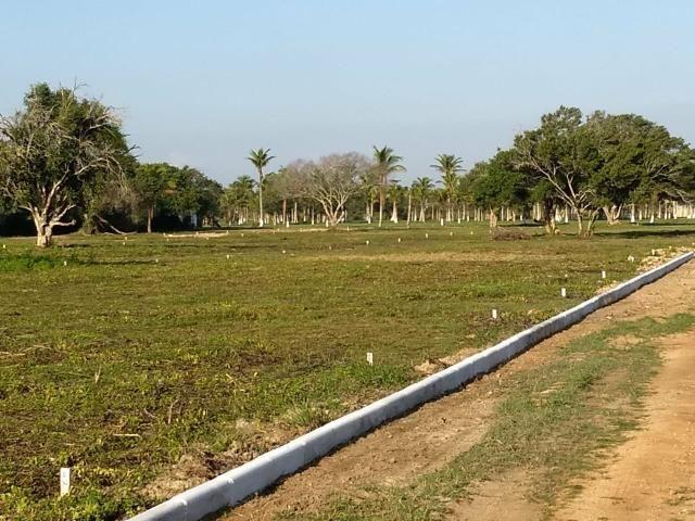 Gs cod 138 Terrenos em Promoção por Tempo Limitado!!! - Foto 4