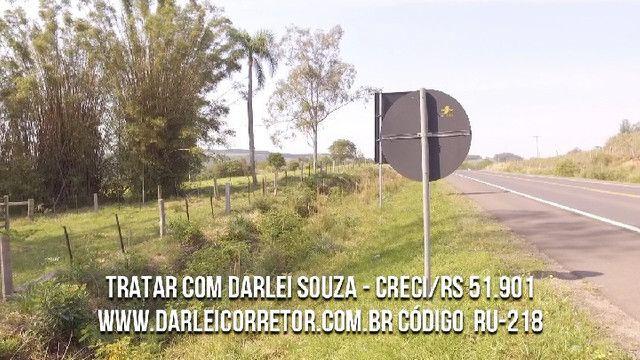 Sítio em Santo Antônio da Patrulha 10 Hectares. Peça o Vídeo Aéreo - Foto 7