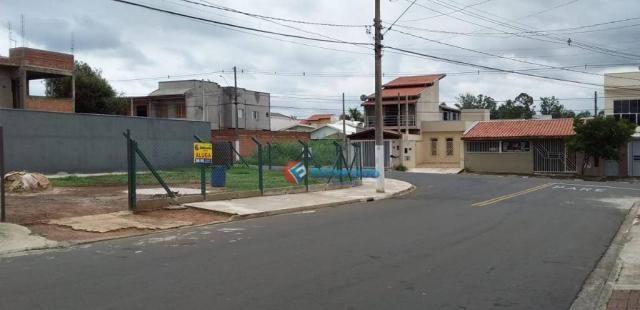 Terreno para alugar, 325 m² por R$ 700,00/mês - Jardim Novo Cambui - Hortolândia/SP