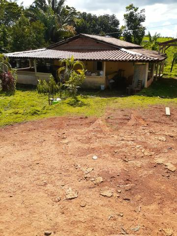 Venda fazenda 20 alqueires localizada 5 km da vila Paulo fonteles - Foto 2