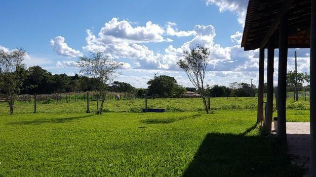 Ótima fazenda colado no Gama, a 27km - Foto 8