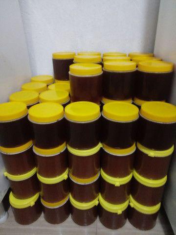 Mel de abelha 100% silvestre - Foto 2