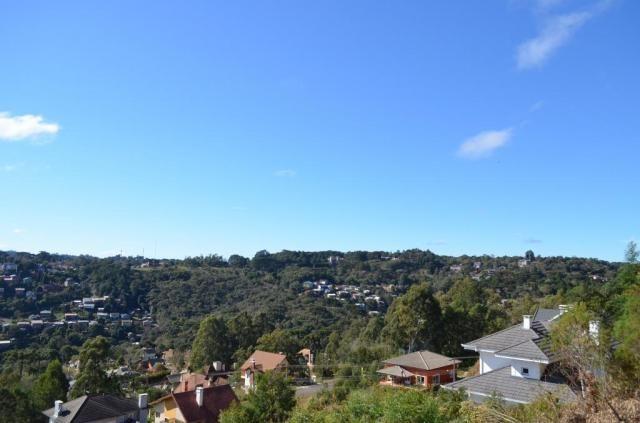 Terreno residencial à venda, vale das colinas, gramado. - Foto 7