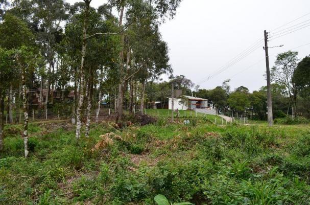 Terreno residencial à venda, casa grande, gramado. - Foto 8