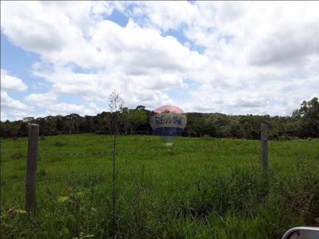 Fazenda à venda em Porto Seguro (Vera Cruz), Bahia - Foto 17