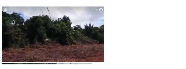 1100 Hectares, cerrado e mata, argilosa, vizinhos Soja, Região, Juína,Brasnorte-MT,Ocasião - Foto 2