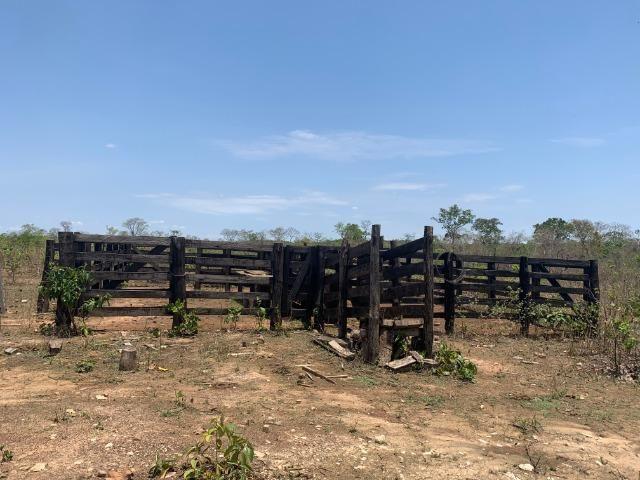 Vendo Sitio / Chácara 72 hectares, Pecuária ou lavoura, Casa, energia, Agua, Nobres - Foto 13
