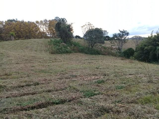 Área de terrras em Cotiporã com 15,9 hectares - Foto 4