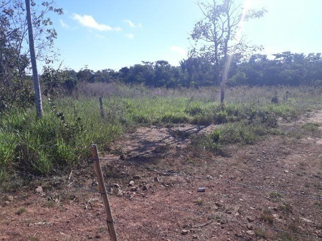 Fazenda de 785 hectares em Rosário Oeste MT - Foto 17