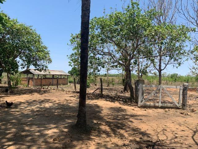 Vendo Sitio / Chácara 72 hectares, Pecuária ou lavoura, Casa, energia, Agua, Nobres - Foto 11